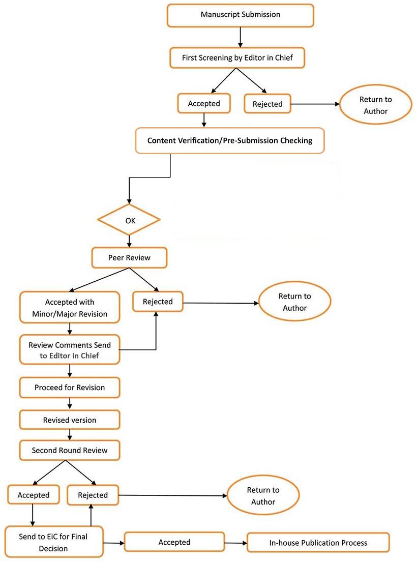 publication cycle - process flow